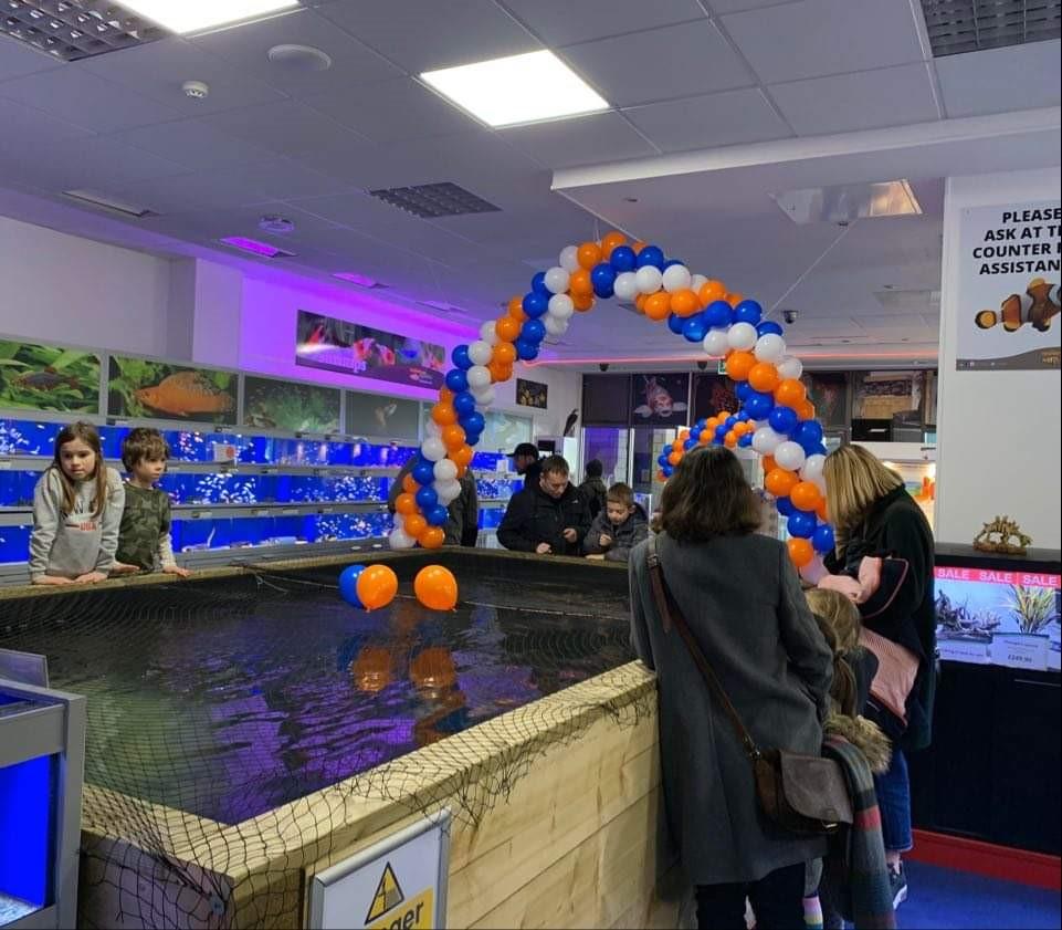 Brighton Marine Maidenhead Aquatics Store 2