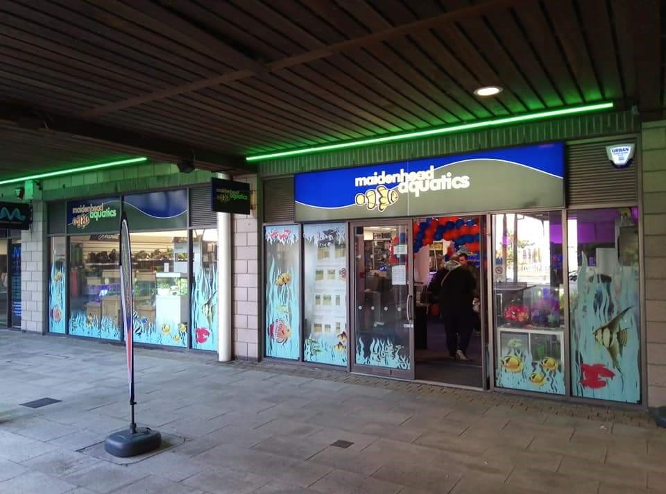 Brighton Marina Store Maidenhead Aquatics