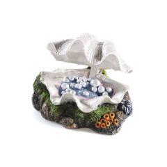 Clam, aquarium ornament.