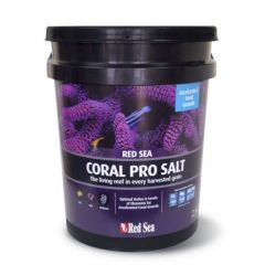 coral, salt, red sea, aquarium salt