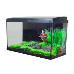 Aqua Tropic aquarium fish tank
