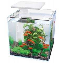 Superfish Qubiq Pro 30 LED Aquarium