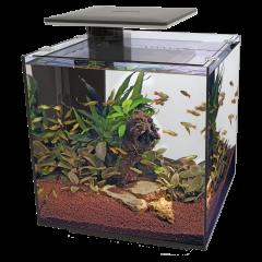 Superfish Qubiq Pro 60 LED Aquarium