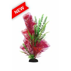 pink and green aquarium plant, with base.
