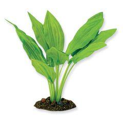 silk amazon broad leaf aquarium plant