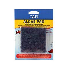 Spare grey algae pad, for API algae scrapper.