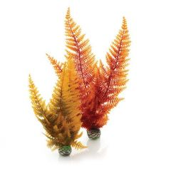 Autumn fern, aquarium ornaments.