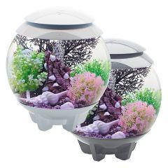 MCR aquarium, BiOrb, starter aquarium