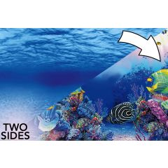 Superfish Aquarium 2 Sided Poster Background Marine and Underwater