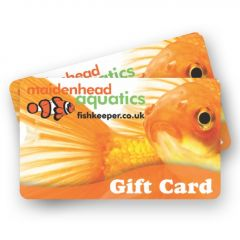 Maidenhead Aquatics Goldfish Gift Card