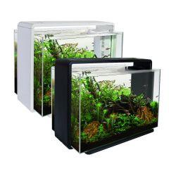 Home 80 Aquarium