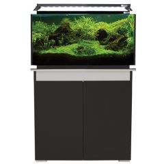 Open top aquarium with black cabinet.