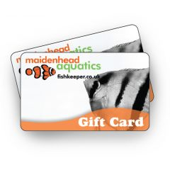 Maidenhead Aquatics Tropical Gift Card