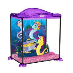 Pink Sea Unicorn, Marina Aquarium