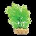 Hugo Mizu, aquarium plant with base.