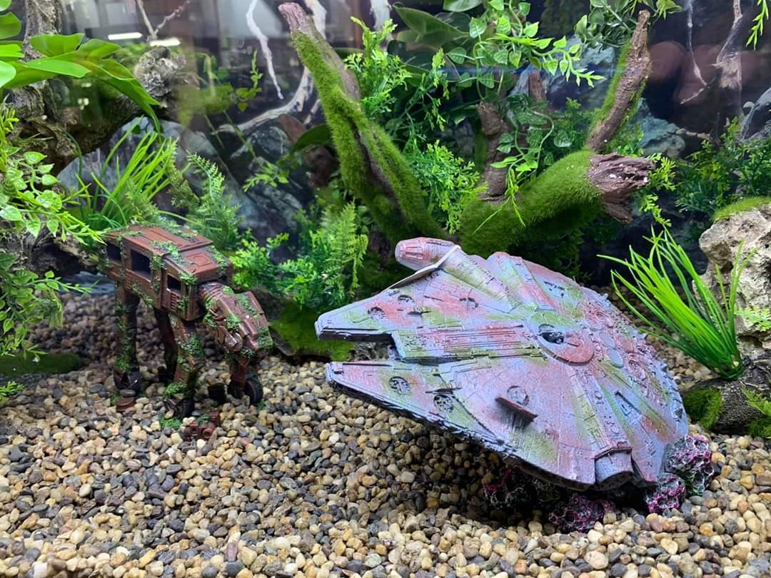 Brighton Marina store display tank