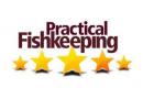 'Top 20 Store in UK' Practical Fishkeeping Magazine- 2006