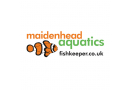 Maidenhead Aquatics 'Annual Award for Best Livestock', 2009